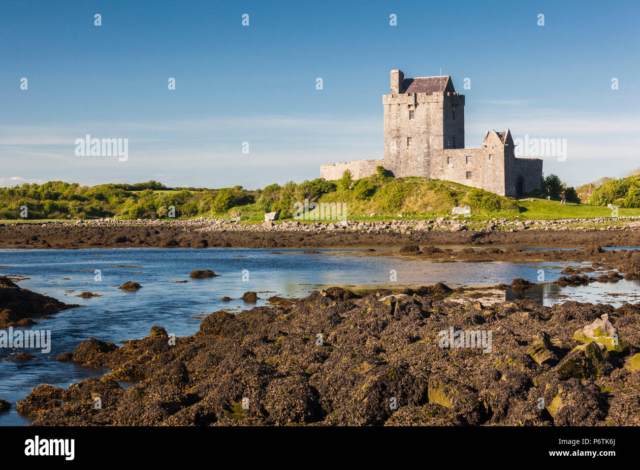 Ireland, County Galway, Kinvara, Dunguaire Castle - Stock Image
