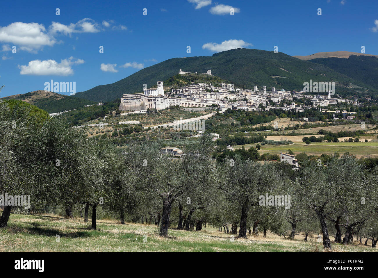 Cityscape, Assisi, Umbria, Italy - Stock Image