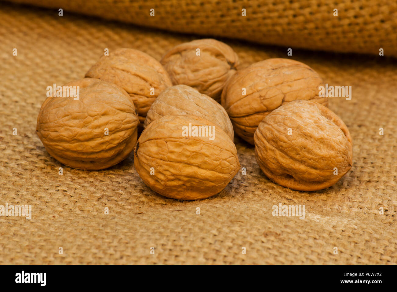 Walnuts on burlap - Stock Image