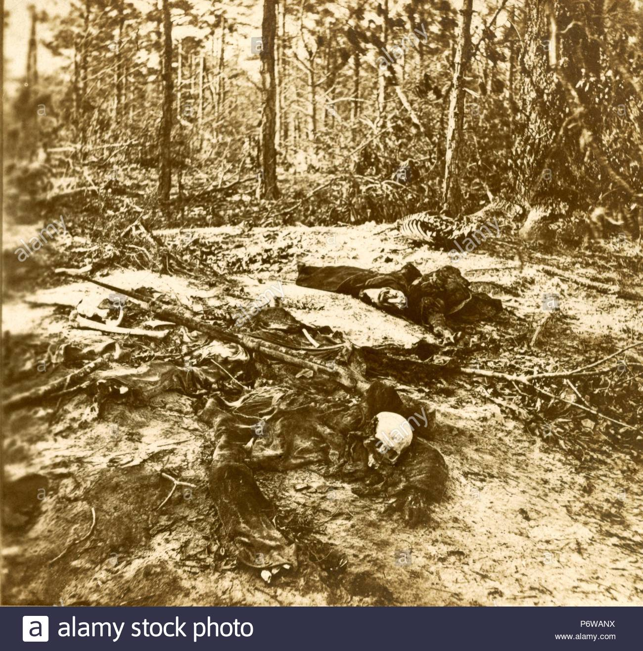 These died, that our Nation might live. We were driven from this field  (Wilderness) before we could gather our wounded or bury our dead. 5a1be78b3e