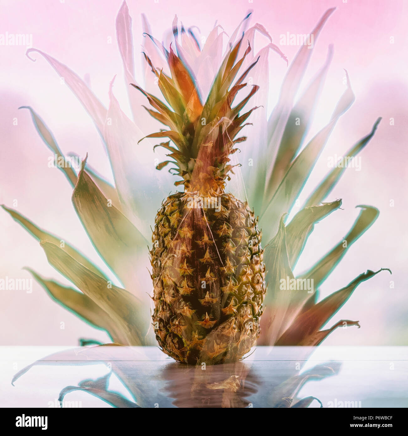 Pineapple On Wooden Table On Abstract Pink Background Tropic