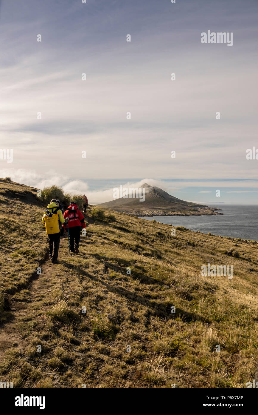 Expedition ship passengers hiking on Steeple Jason Island, Falkland Islands Stock Photo
