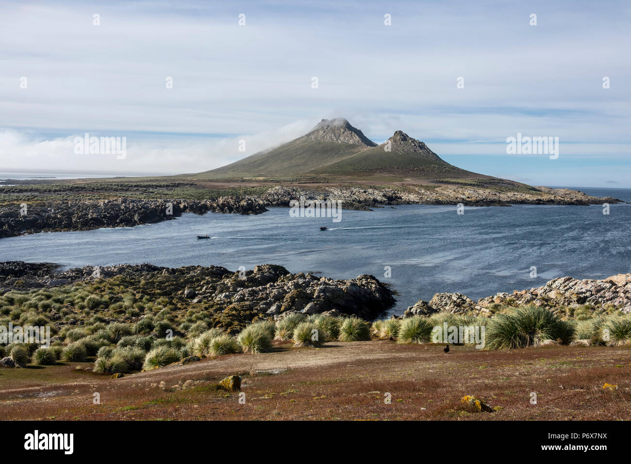 The rocky peaks of Steeple Jason Island, Falkland Islands Stock Photo