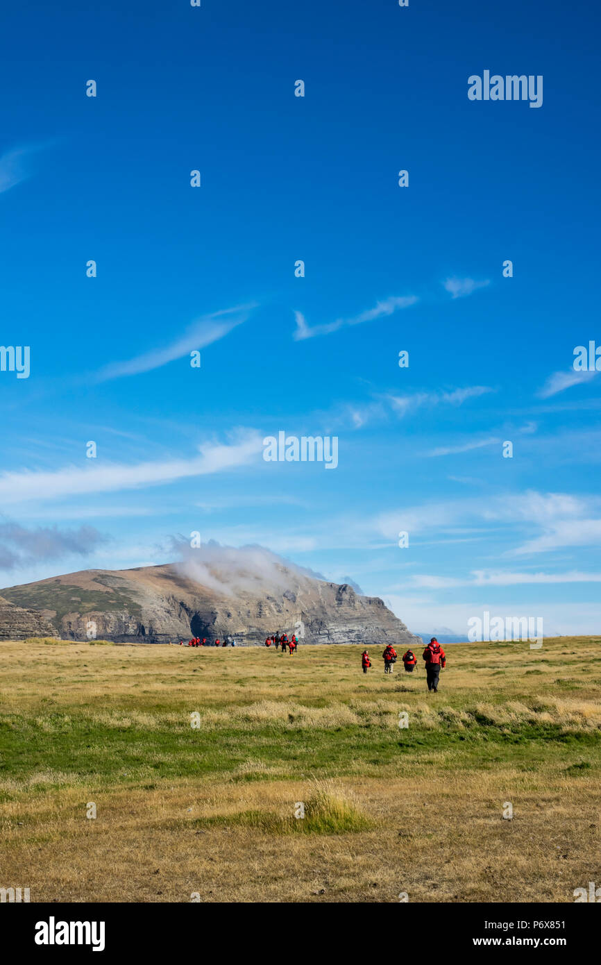 Expedition cruise ship passengers hiking at Grave Cove, West Falkland, Falkland Islands Stock Photo
