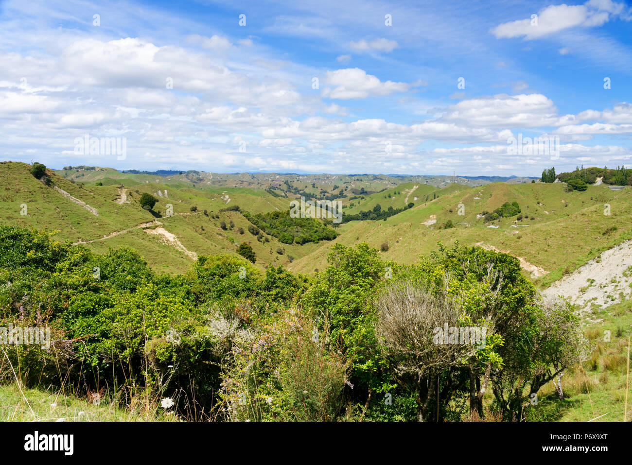 Rural scenry along the Forgotten World Highway, New Zealand - Stock Image