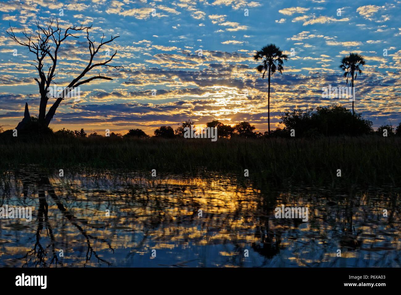 Sunrise in the Okavango Delta, Botswana - Stock Image