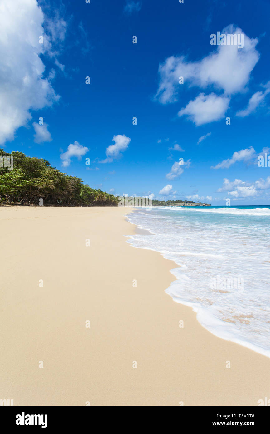 Dominican Republic, Rio San Juan, Playa Grande Stock Photo