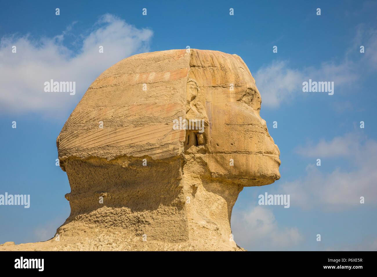 Sphinx, Pyramids of Giza, Giza, Cairo, Egypt - Stock Image