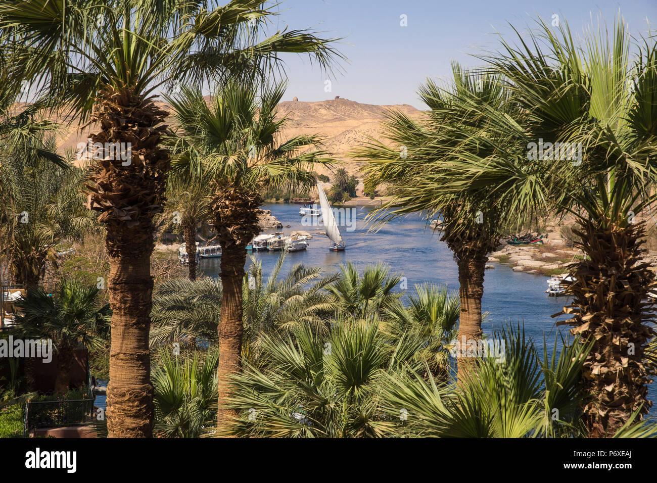 Egypt Upper Egypt Aswan Gardens At The Sofitel Legend Old