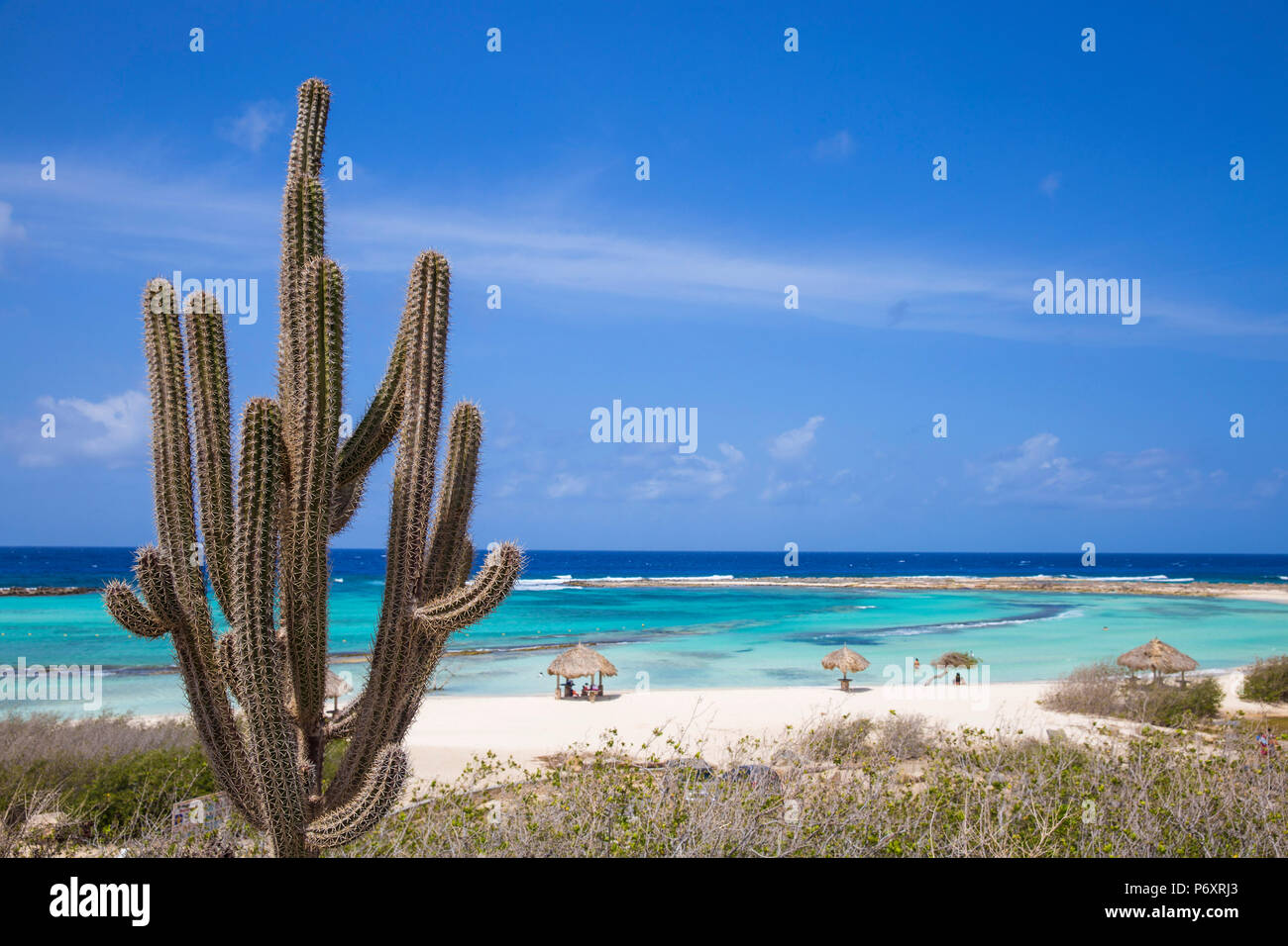 Caribbean, Netherland Antilles, Aruba, Baby beach - Stock Image