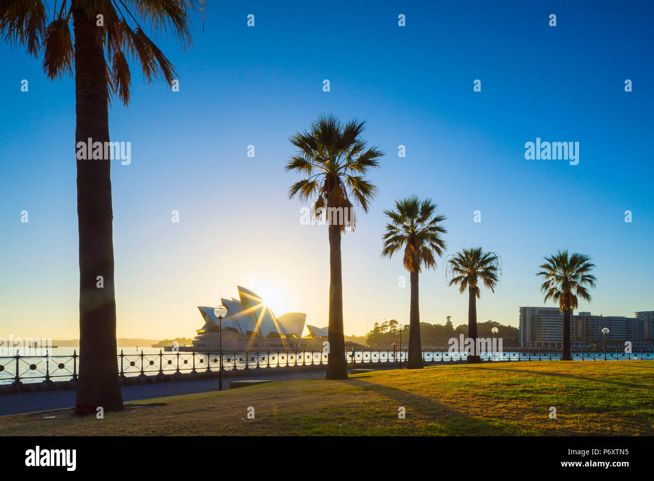 Sydney Opera House at sunrise, Sydney, New South Wales, Australia - Stock Image