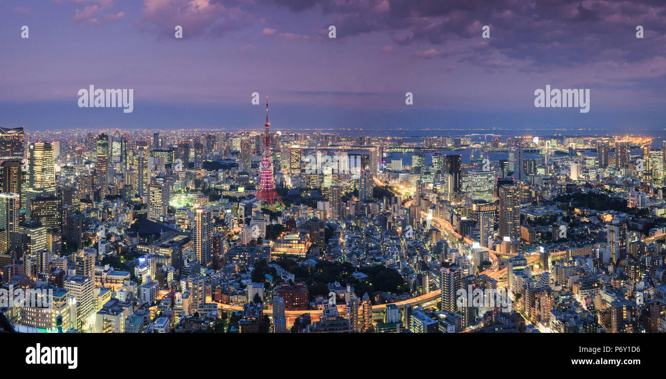 Japan, Tokyo, Aerial view of cityscape and Tokyo Tower - Stock Image