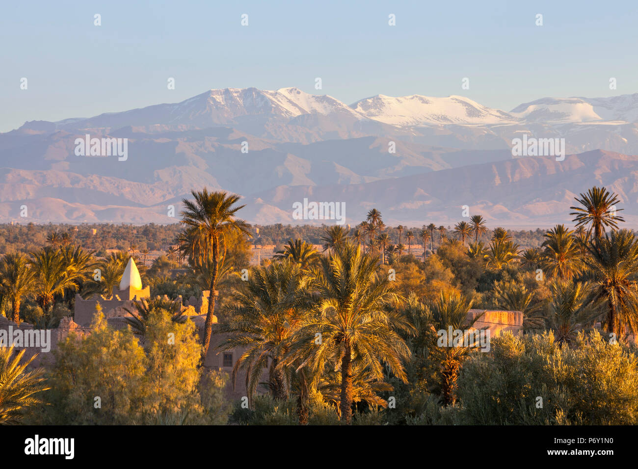 View from Palmery towards Atlas Mountains  at sunrise, Skoura, Morocco, RF - Stock Image