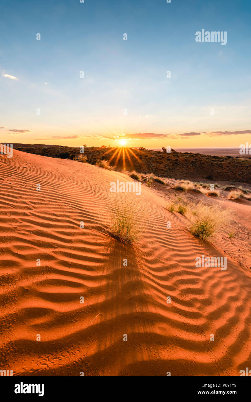 Namib-Naukluft National Park, Namibia, Africa. Ripples of sand on a petrified dune at sunset. - Stock Image