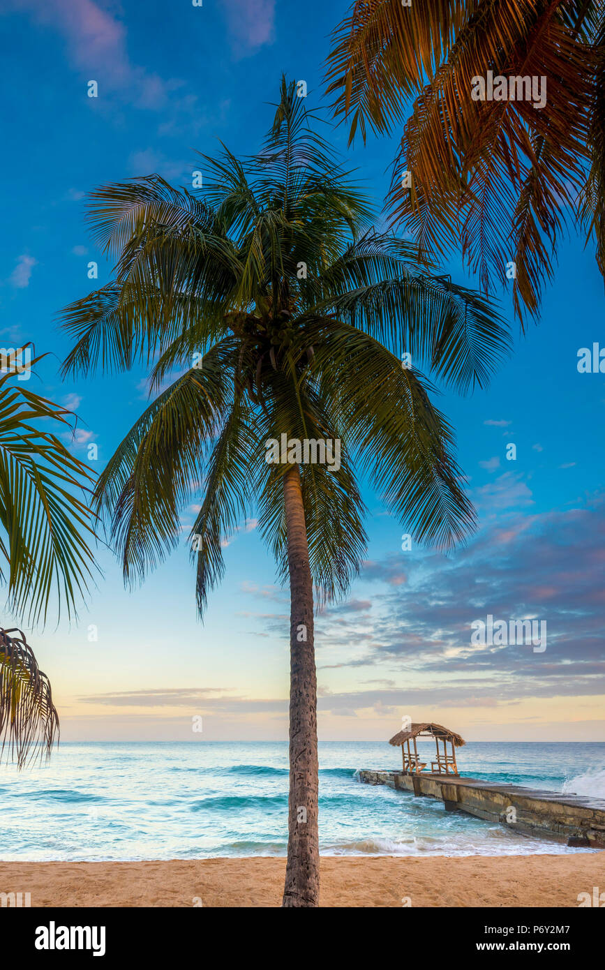 Caribbean, Trinidad and Tobago, Tobago, Sandy Point - Stock Image