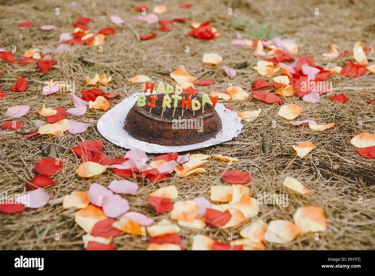 Amazing Happy Birthday Cake With Letters Candles In The Forest Stock Photo Birthday Cards Printable Riciscafe Filternl