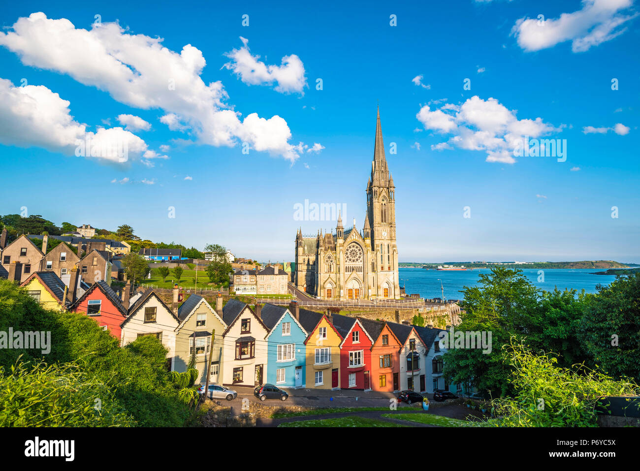 Cobh, County Cork, Munster province, Ireland, Europe. Colored houses in front of the St. Colman's cathedral. - Stock Image