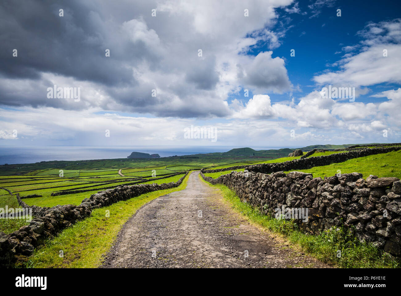 Portugal, Azores, Terceira Island, Serra do Cume, stone wall - Stock Image