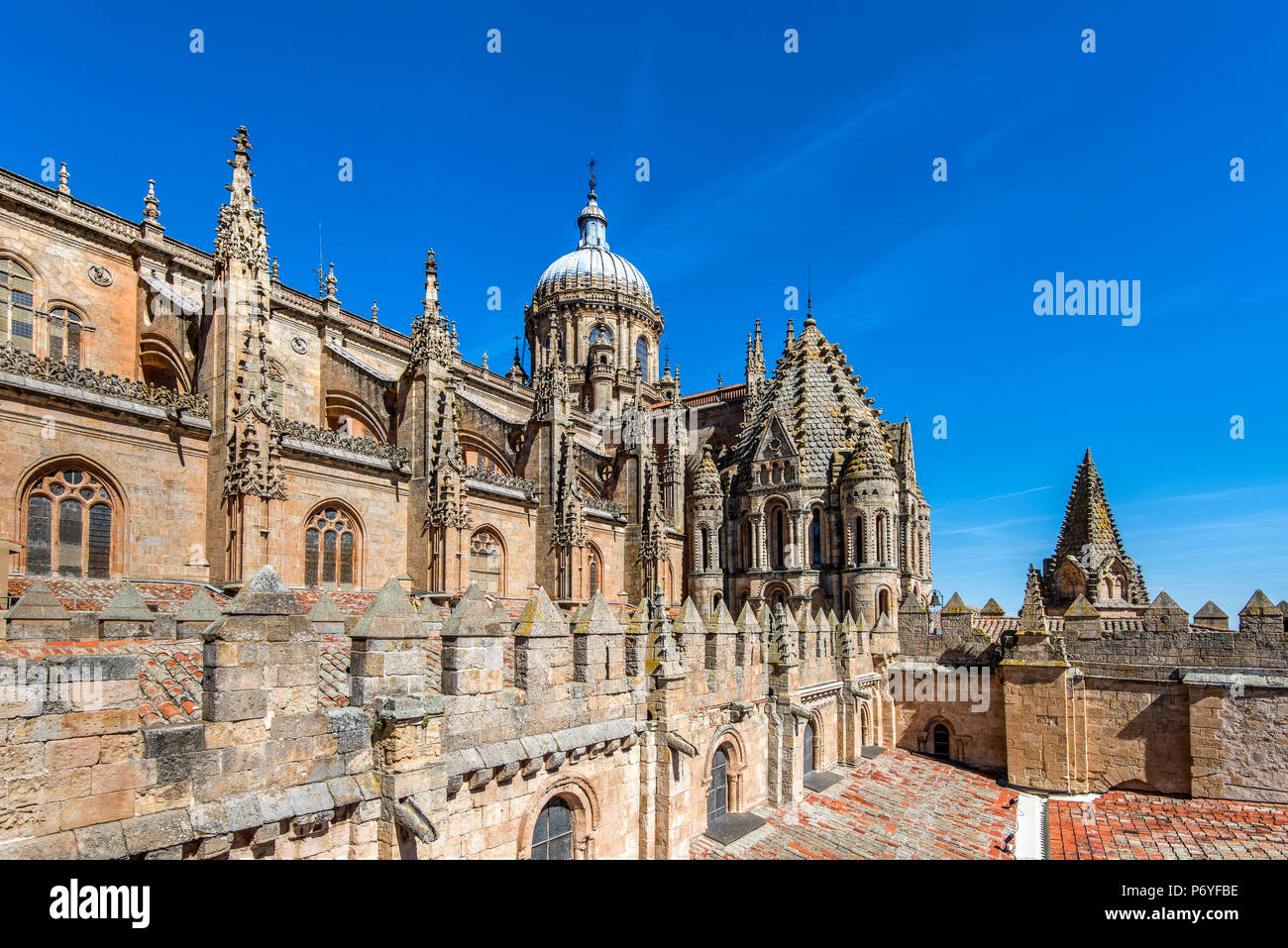 Old Cathedral, Salamanca, Castile and Leon, Spain - Stock Image
