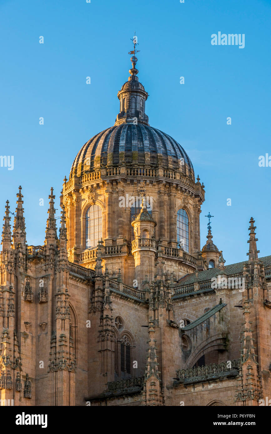 Cathedral, Salamanca, Castile and Leon, Spain - Stock Image