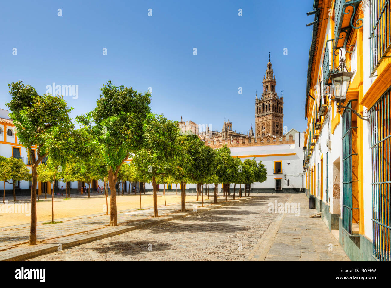Court of Banderas with the Giralda tower of the Cathedral, UNESCO World Heritage Site, Sevilla, Andalusia, Spain - Stock Image