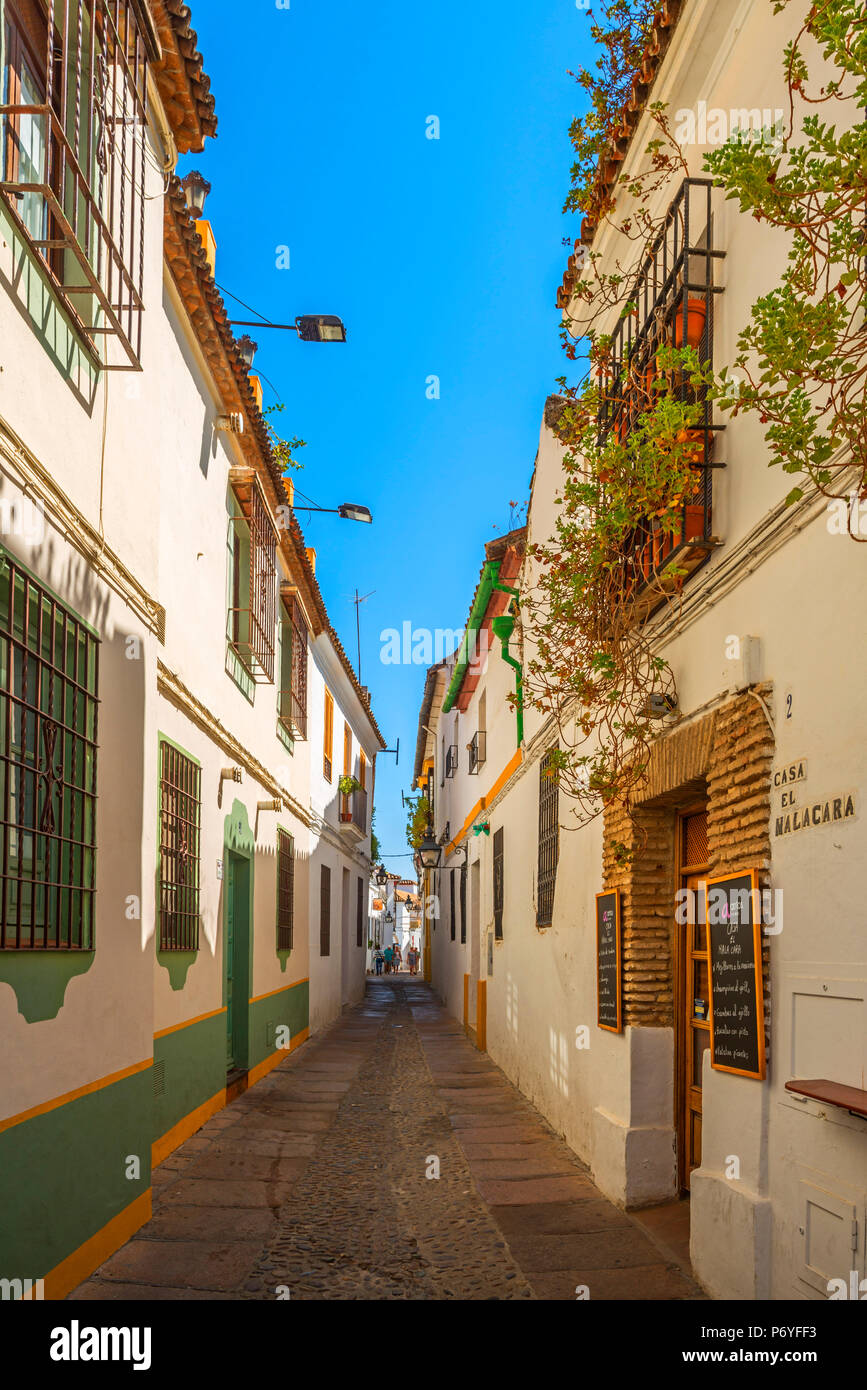 Alley at Cordoba, Andalusia; Spain - Stock Image