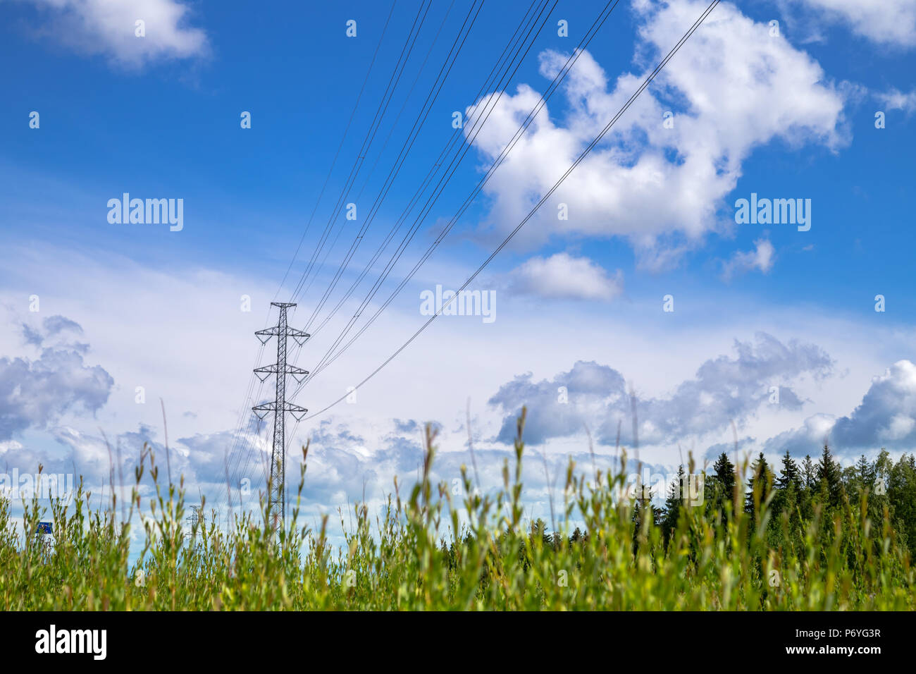 Electric powerlines and pylon behind green grass on sunny summer day - Stock Image