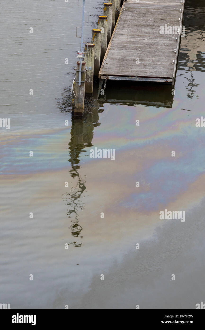 oil pollution on surface of sea in a solent yacht marina at lymington, new forest. - Stock Image