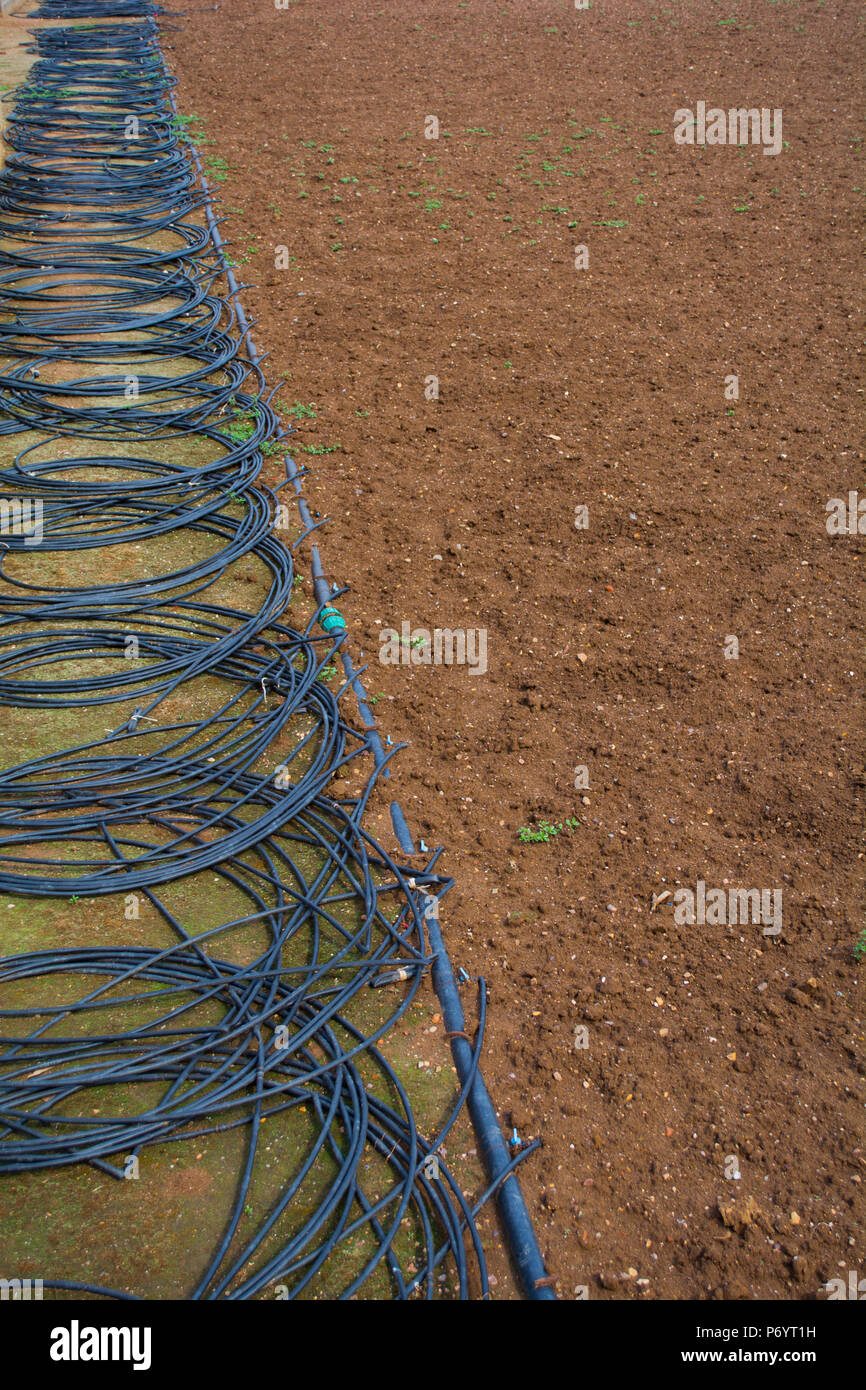 Drip Irrigation Stock Photos Amp Drip Irrigation Stock