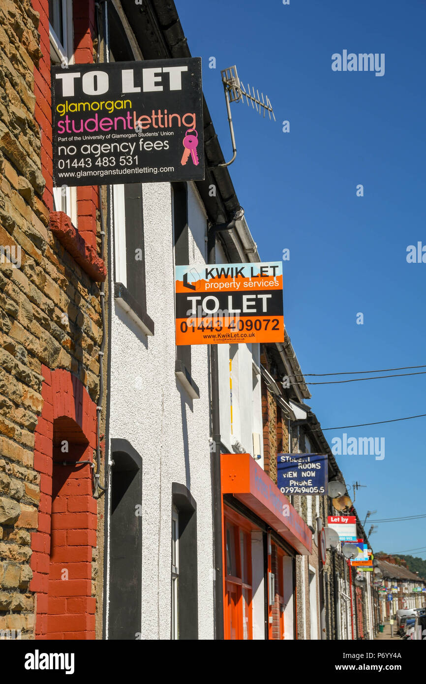 'To let' signs on terraced houses in Treforest, Pontypridd, Wales, advertising rooms to let to students - Stock Image
