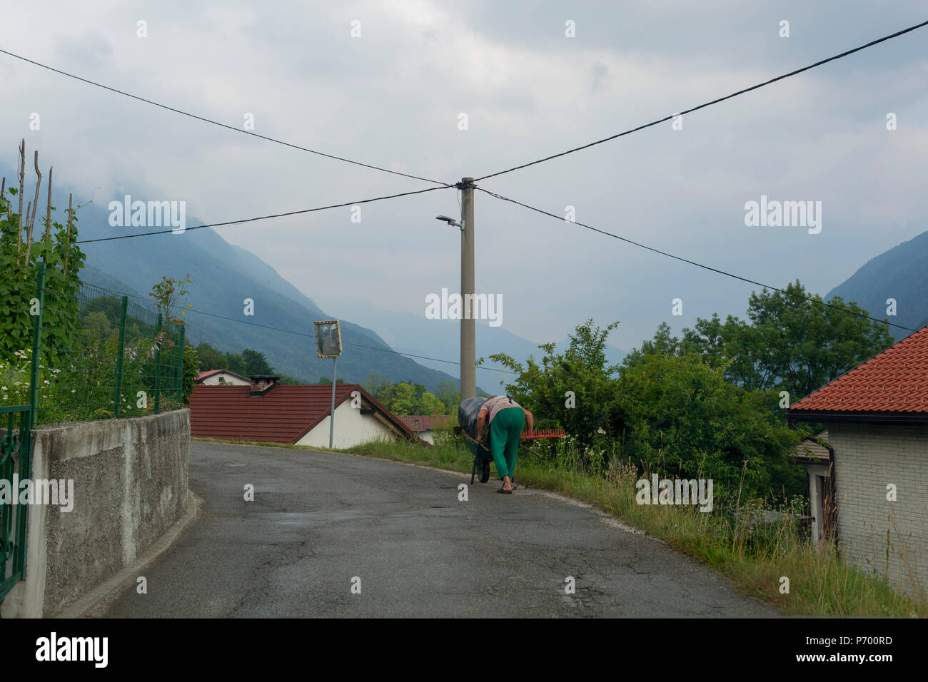 An elderly local woman hunches over a small cart transporting freshly mown grass in a rural mountainside Slovenian village, on 21st June 2018, in Borjana, near Kobarid, Slovenia. - Stock Image