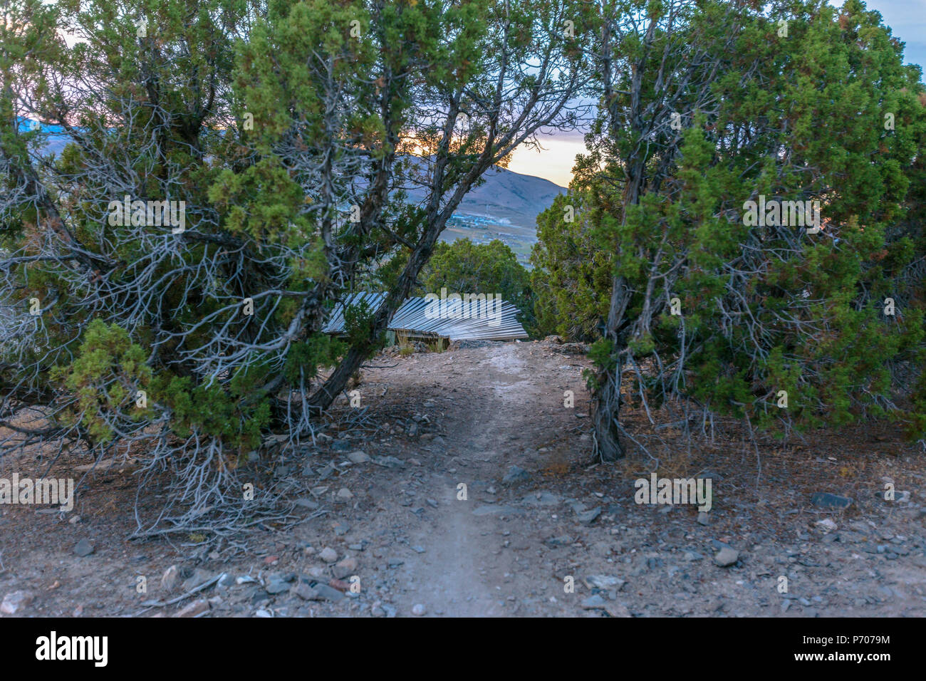 Trail leading to trials feature on hike - Stock Image