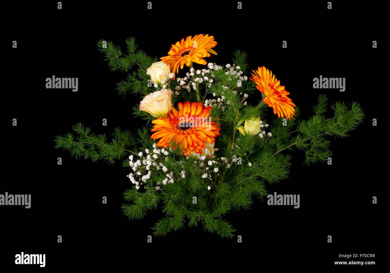 Beautiful bouquet of bright flowers isolated on black. Professional floral arrangement. Stock Photo