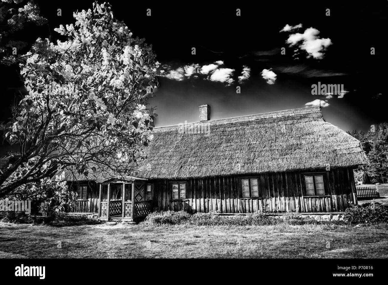 Old house in forest. Open-air ethnography museum in Latvia. - Stock Image