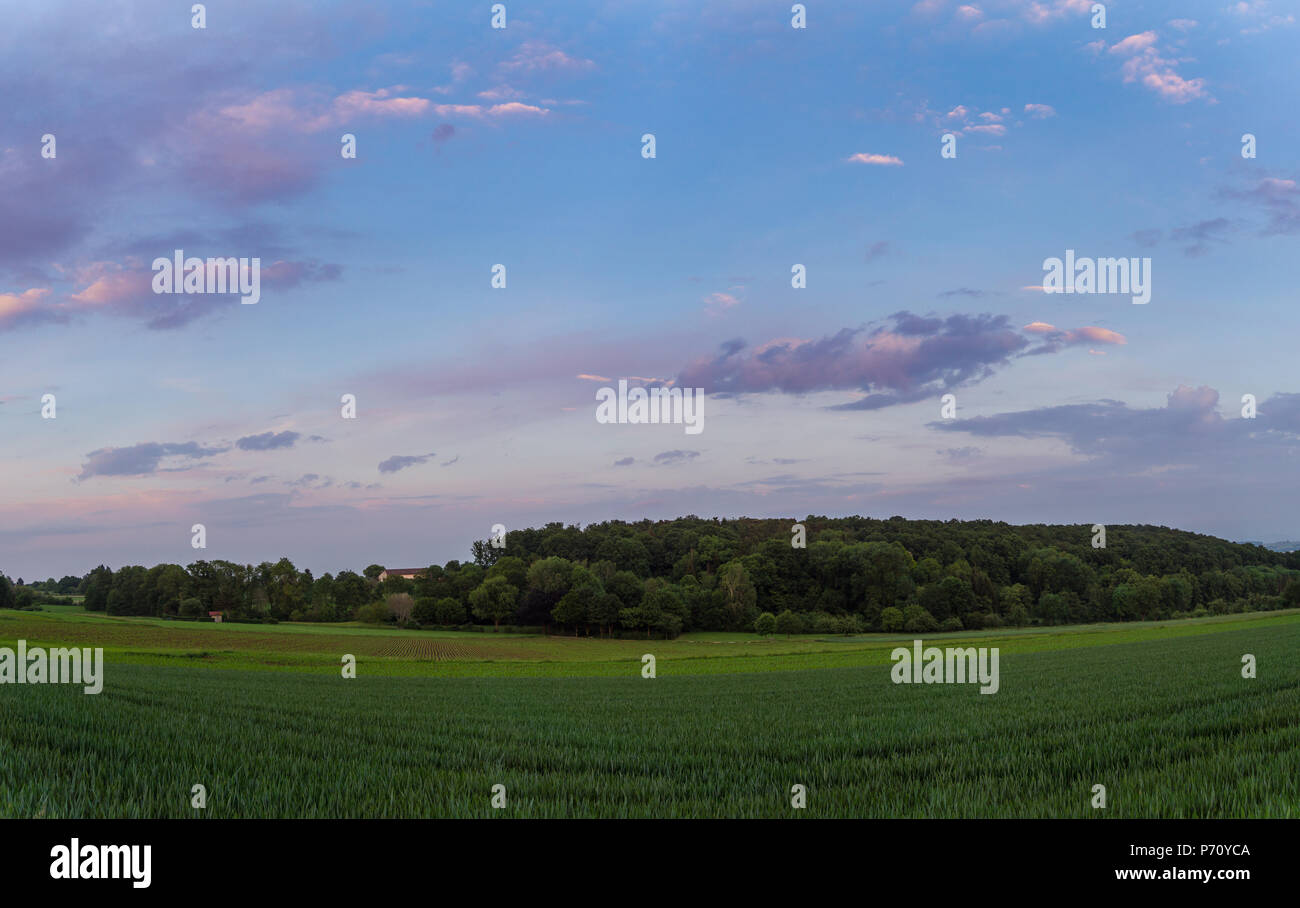 Dawning atmosphere over green fields and forest landscape - Stock Image