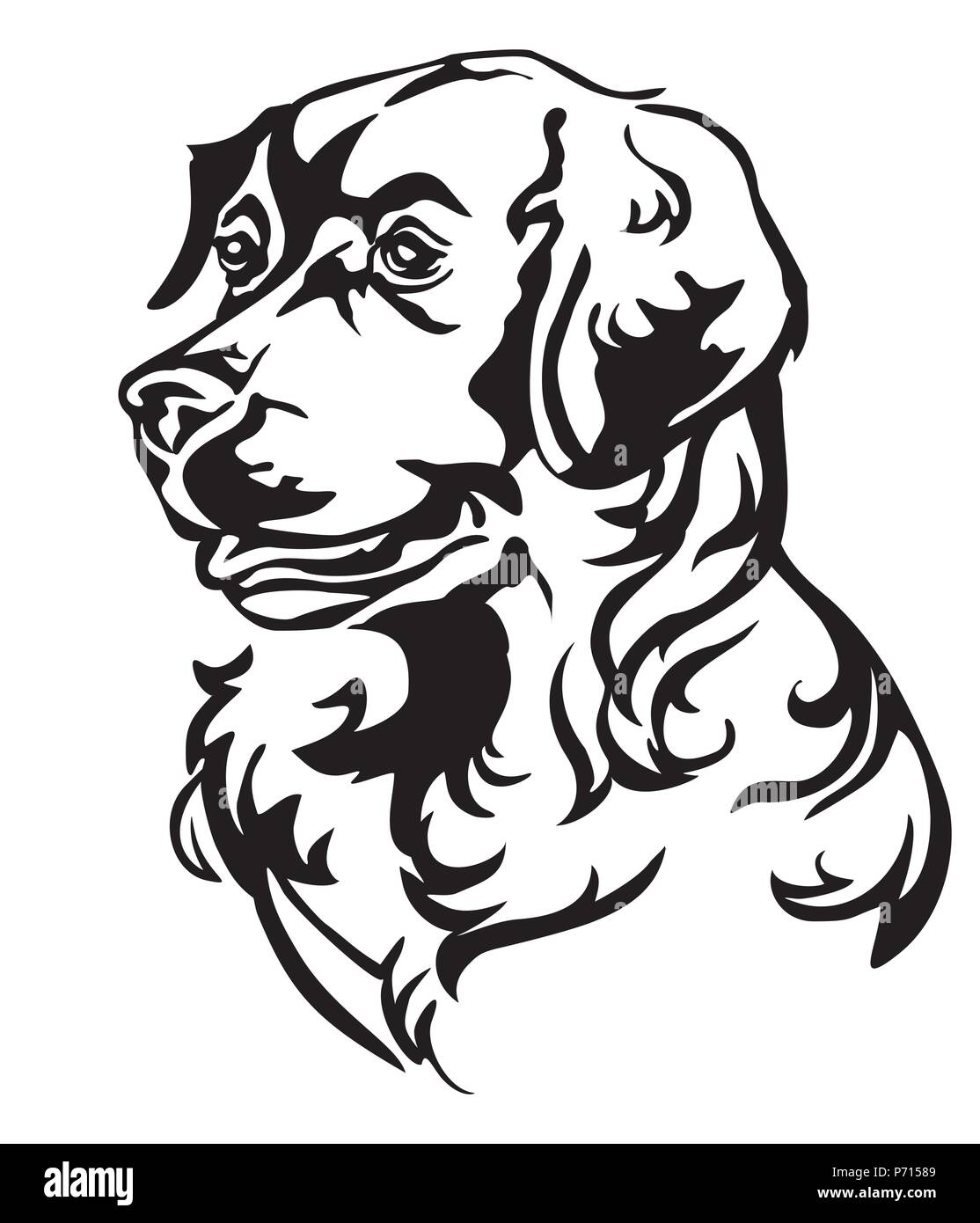 Decorative Portrait In Profile Of Dog Golden Retriever Vector
