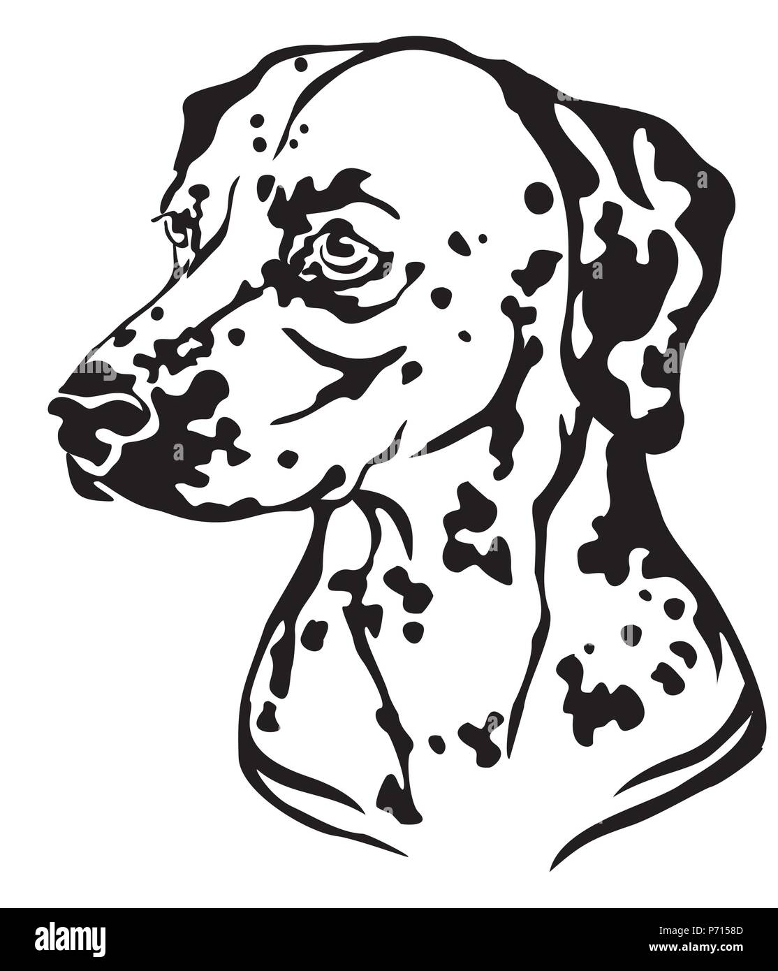Decorative portrait in profile of Dog Dalmatian, vector isolated illustration in black color on white background. Image for design and tattoo. - Stock Vector
