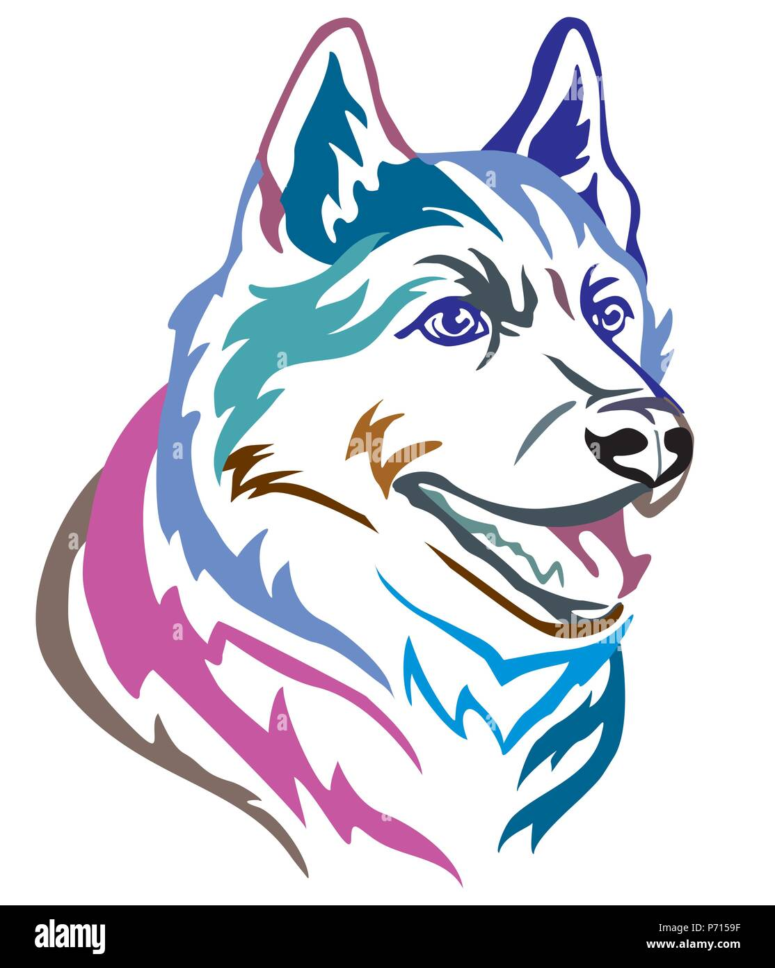 Colorful decorative portrait in profile of Dog Siberian Husky, vector illustration in different colors isolated on white background. Image for design  - Stock Vector