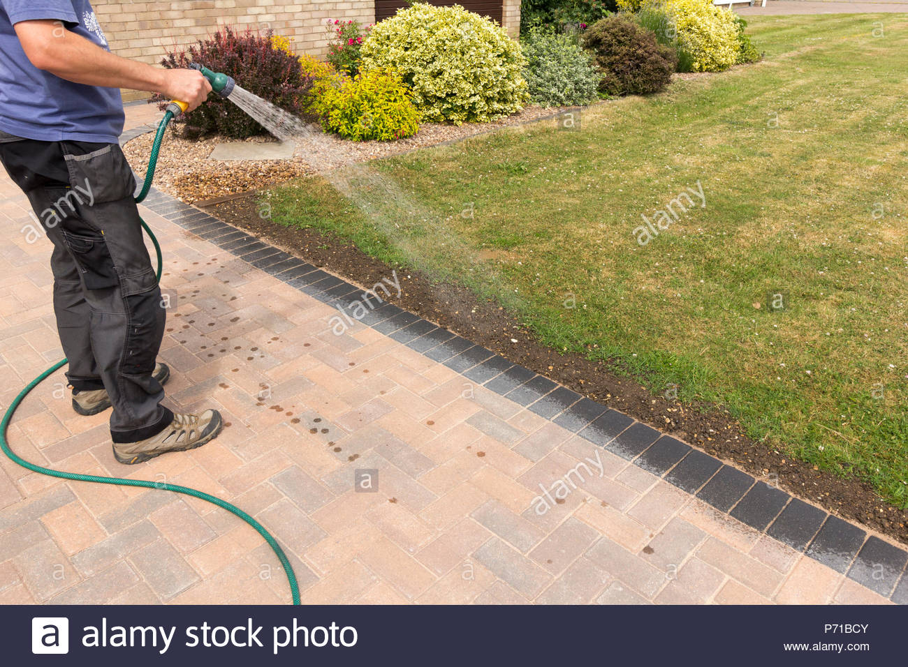 Man using a hosepipe to water in lawn seed to a strip of earth in grass lawn - Stock Image