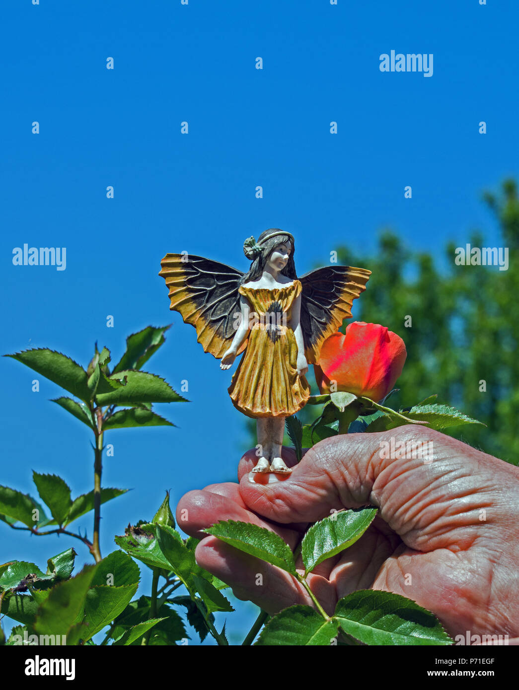 Model Fairy on a human hand - Stock Image