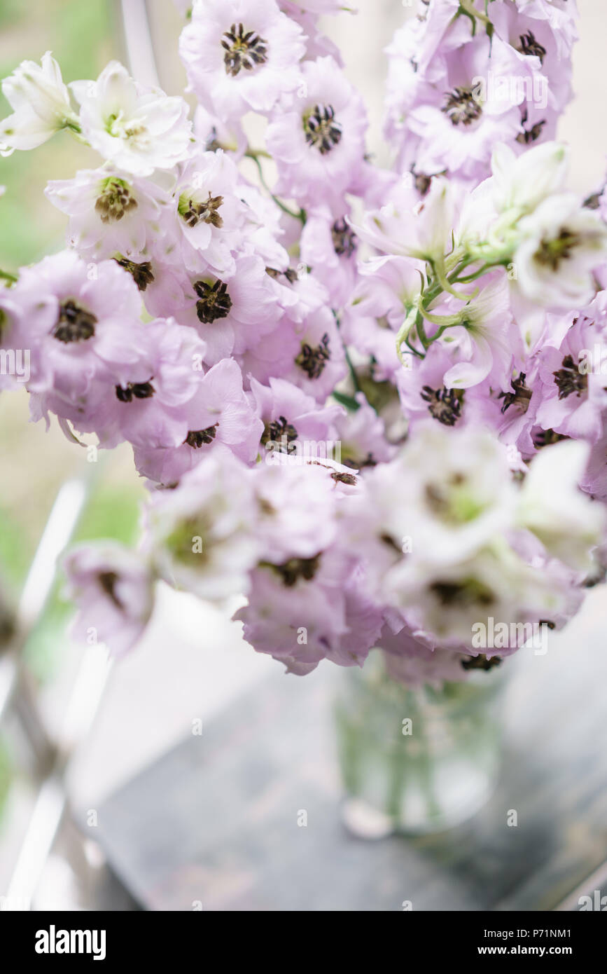 Lilac Delphiniums In Glass Vase On Gray Table Summer Wallpaper Selective Focus Flower Shop Concept