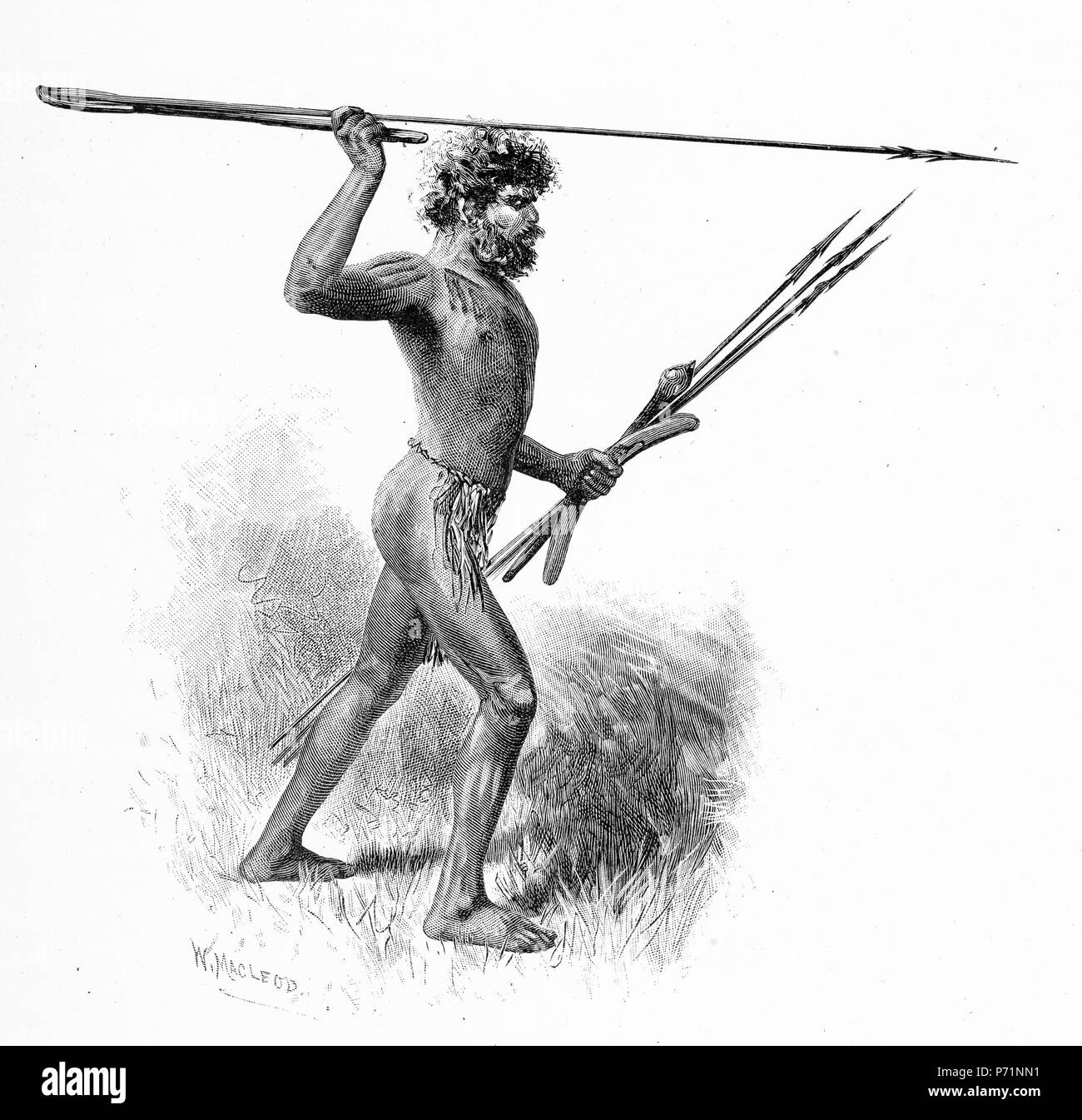 Engraving of an Aboriginal warrior throwing a spear with the aid of a woomera or throwing stick, Australia. From the Picturesque Atlas of Australasia Vol 3, 1886 Stock Photo