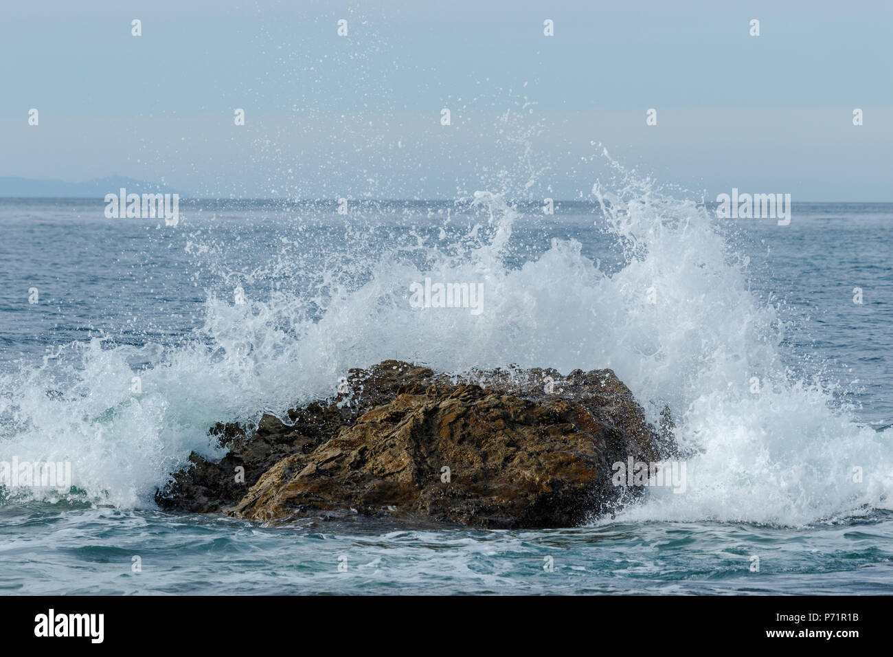 Wave breaking on a rock just offshore that was exposed by low tide. In  Crystal Cove State Park 7edcaa79b