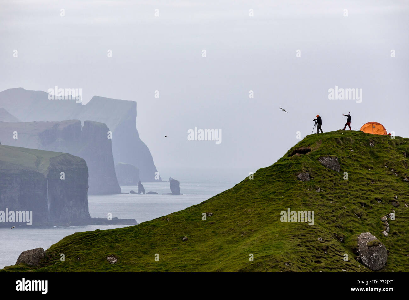 Hikers and tent on cliffs, Kalsoy Island, Faroe Islands, Denmark, Europe - Stock Image
