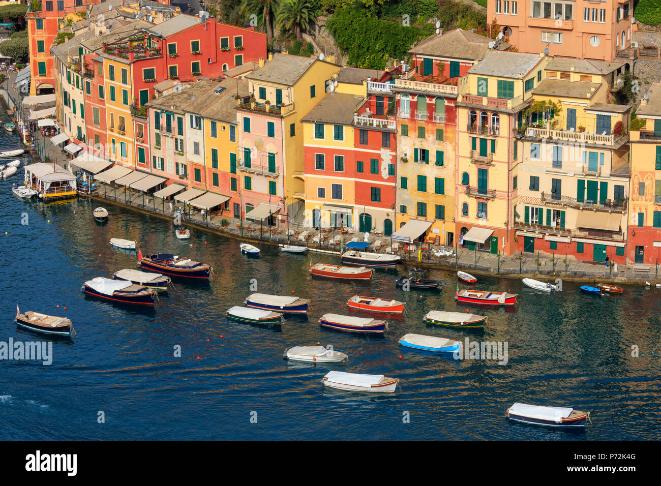 Harbour and typical coloured houses, Portofino, province of Genoa, Liguria, Italy, Europe - Stock Image