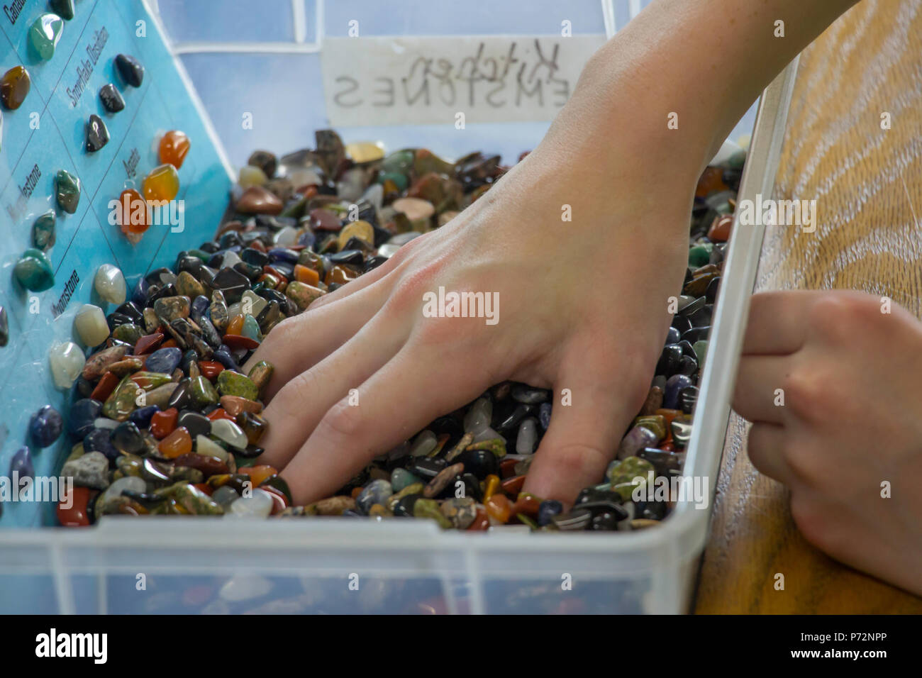 young boy's hand searching for a perfect stone in a box full of semi-precious gemstone Stock Photo
