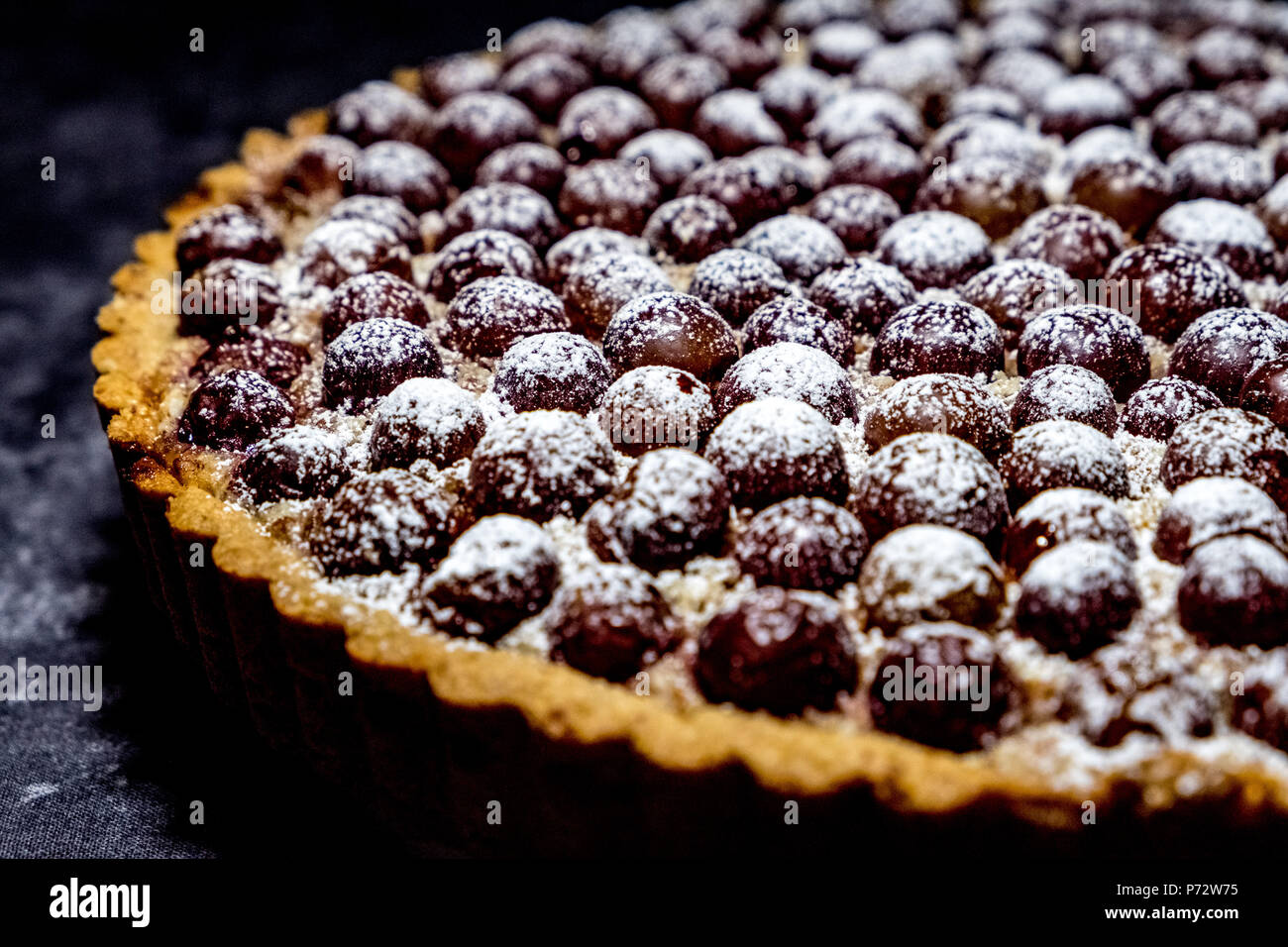 Close-up of Freshly Baked Grape Tart Dusted with Powdered Sugar - Stock Image