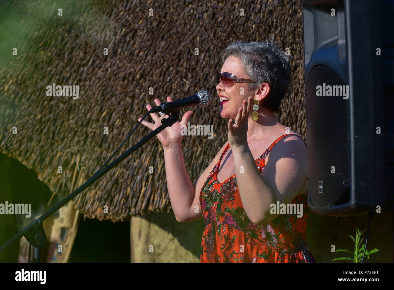 County Tyrone, UK. 4th July, 2018. Poet and Activist Michelle Dennehy recites one of her poems to gathered members of  Activists groups and community members fighting against the proposed destruction of the Sperrin Mountains in County Tyrone. County Tyrone: UK:4th July 2018 Credit: Mark Winter/Alamy Live News - Stock Image