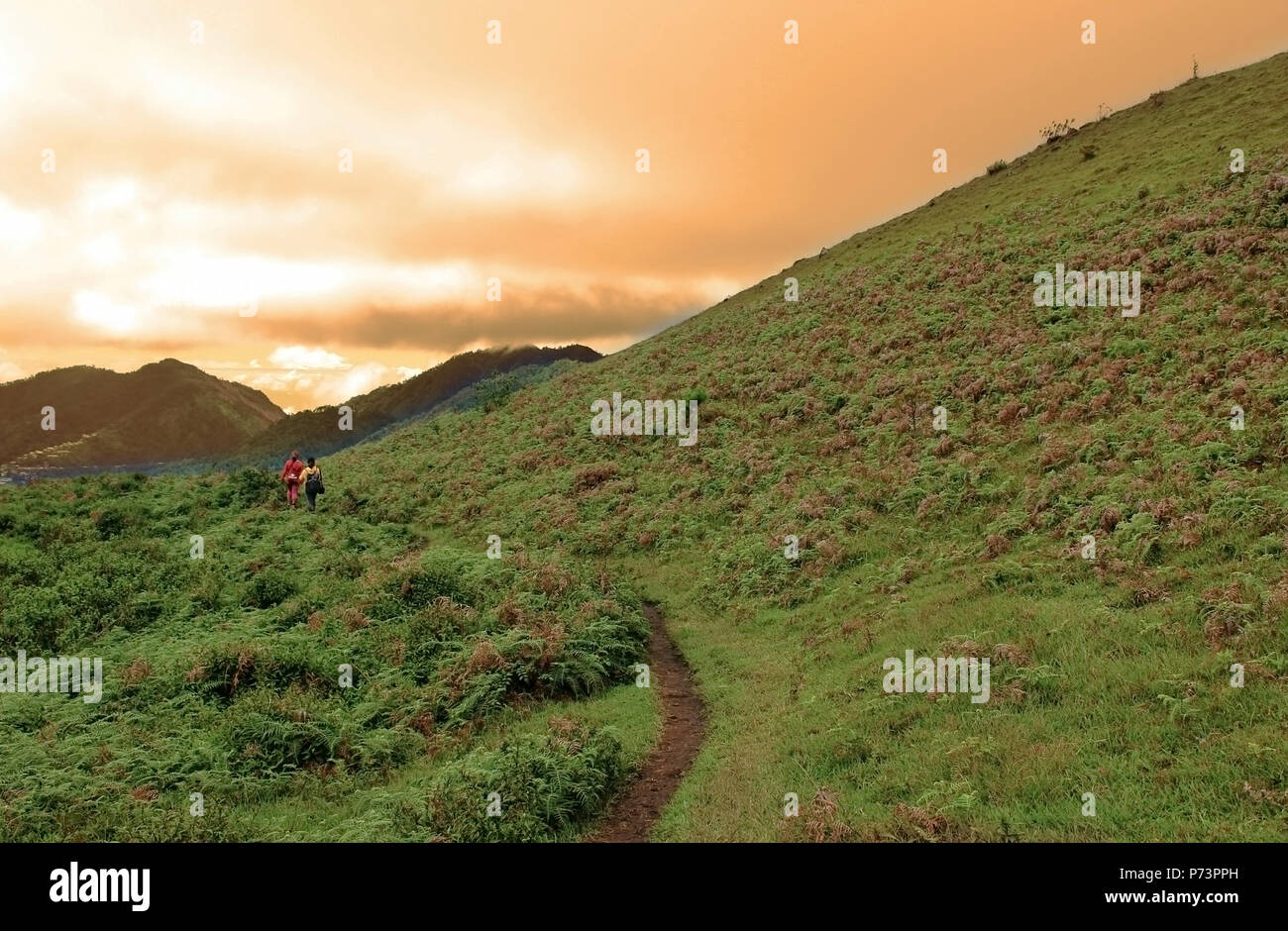 Afternoon Scenery At The Mountain, Mountain Afternoon Hiking - Stock Image