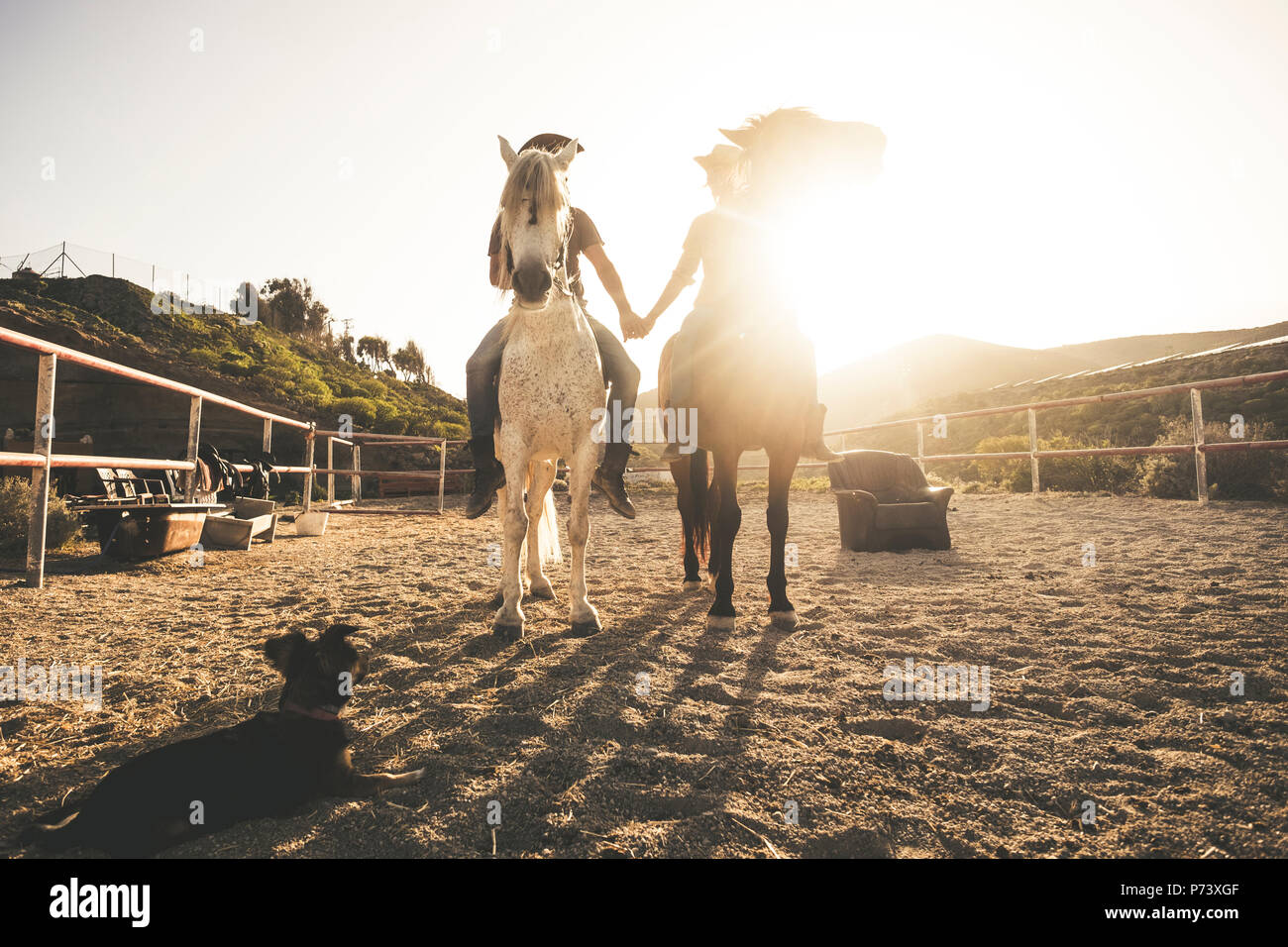 horse riding scenic picture with two animal and people couple and a dog taking hands with love and friendship and sunset sunlight in the background. w - Stock Image